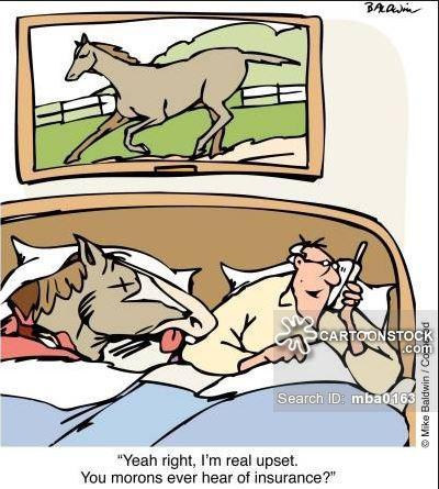 horse head in bed.JPG