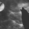 WolfmoonCT